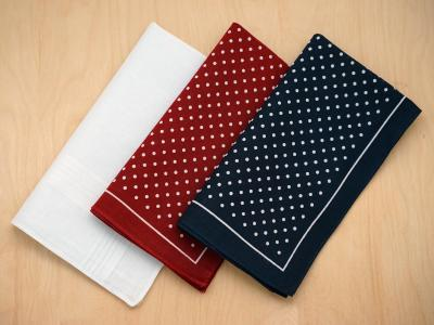 Set of 3 Assorted Polka Dot Handkerchiefs